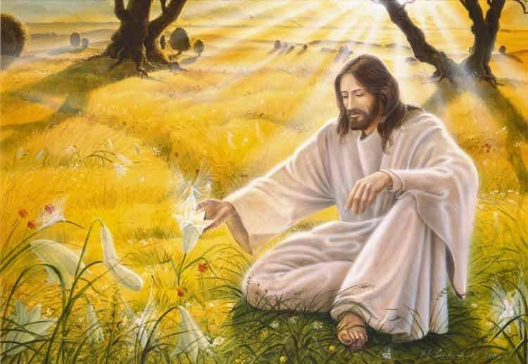http://dreamworlds.ru/uploads/posts/2010-01/1262984728_christus-elfenreich.jpg