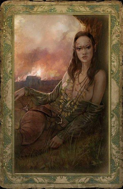 Witcher card Toruv.