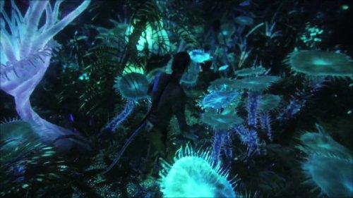http://dreamworlds.ru/uploads/posts/2010-01/thumbs/1262938696_800px-bioluminescent_beauty.jpg
