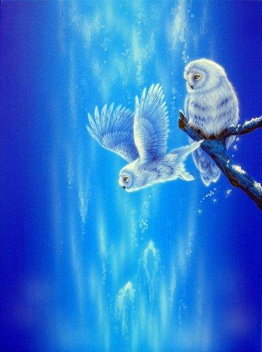 Марка нитей. совы.  Svetlisha.  Теги: филины.  Полёт птенца. птицы.  0. Гамма, 52 цвета.