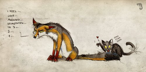 Лисы от Culpeo-Fox. Смешное