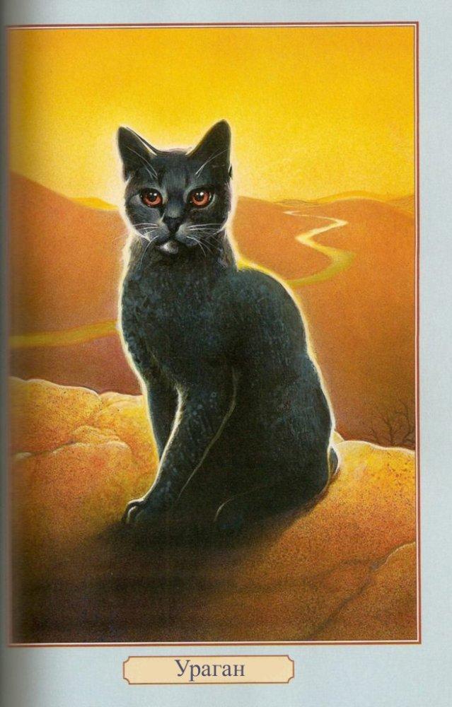 Коты воители огнезвезд фото - 08