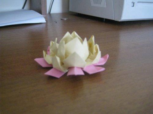 Бабочки из оригами модули схема.
