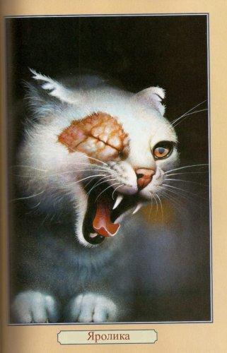 все коты воители которые есть.