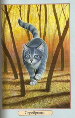 эти картинки из книги коты-воители Герои племен!Я имею в виду такого вида.