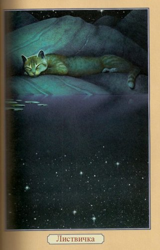 Опрос: Коты-воители Ну вот я решила создать опрос по Котам-воителям.