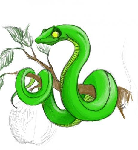 Рисунок на капюшоне кобры сканворд