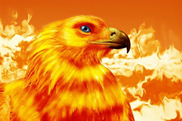 Обгорелую башню в Грозном назовут Фениксом08.04.2013.  По многочисленным просьбам трудящихся башню в столице...