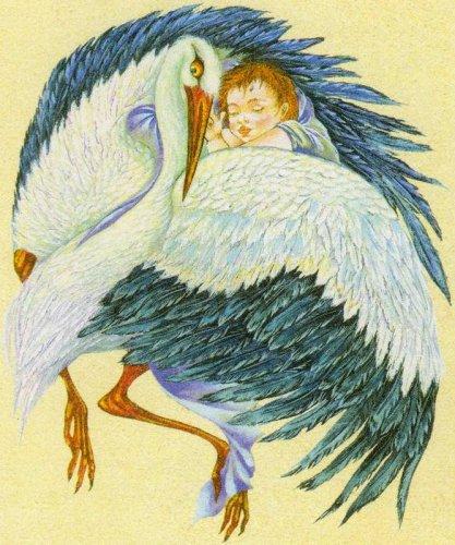 По древним поверьям именно аист находил на болотах и в трясинах...  Почему говорят что ребенка приносит аист.