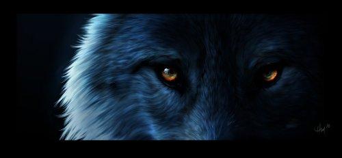 видеоурок песни волки би 2