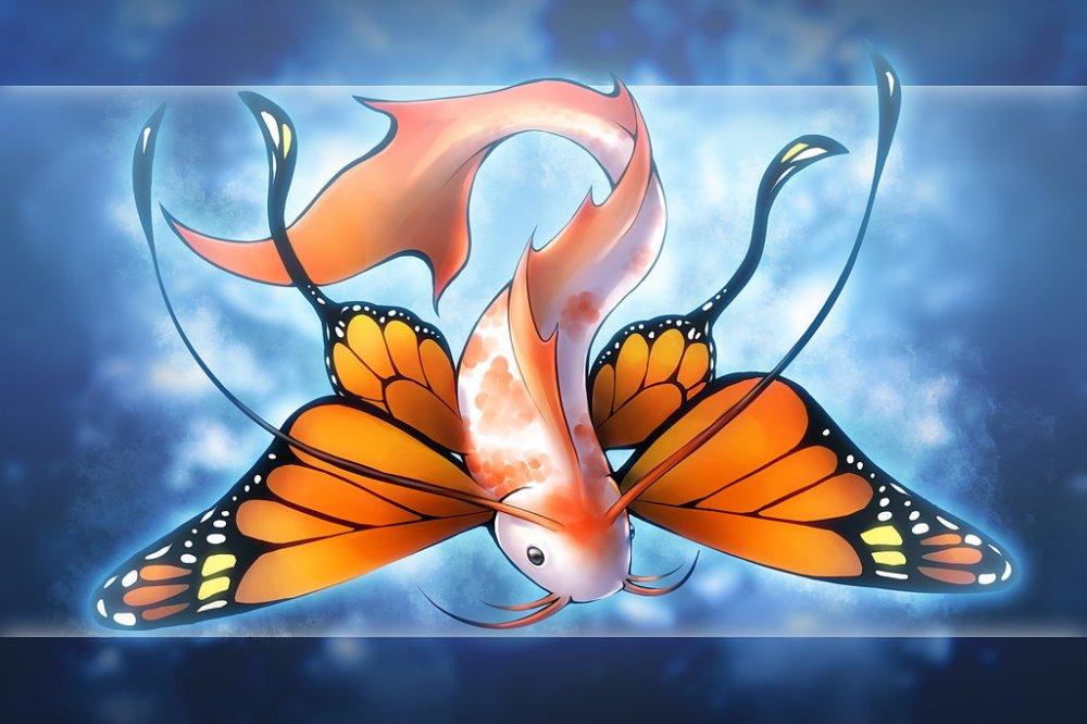 Рыба, бабочка, существо обои, фото, картинки