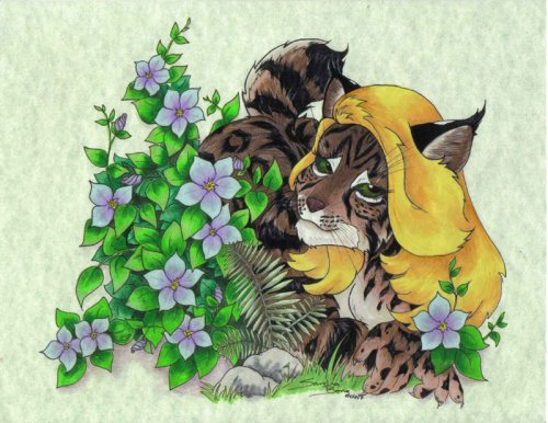 http://dreamworlds.ru/uploads/posts/2011-01/thumbs/1296474866_flower_bobcat_by_sandrabong.jpg