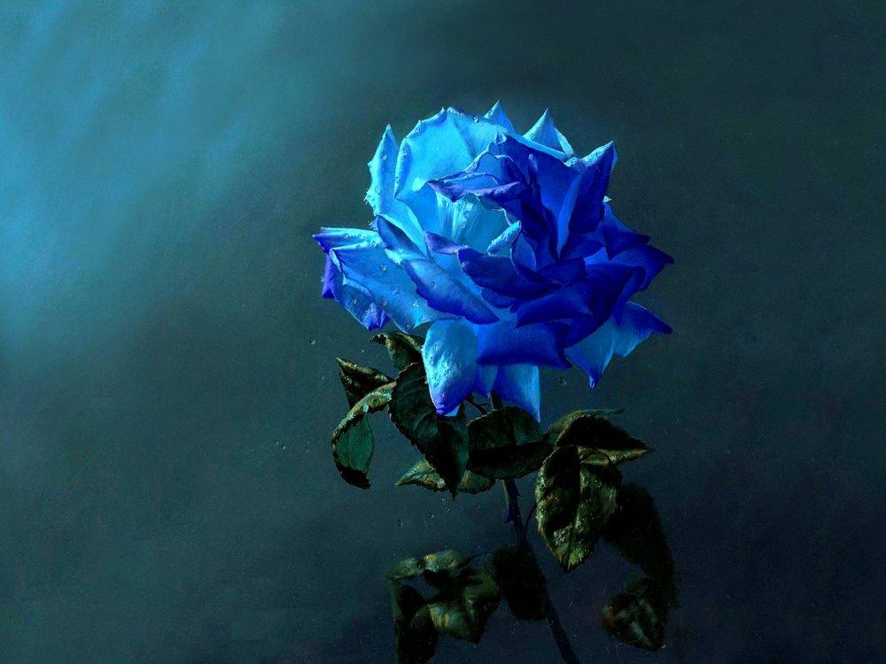 Цветы в живописи картинки 7