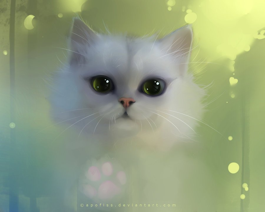 Картинки няшек кошек 6