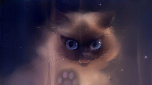 взгляд, клыки, зубы, Кошка, рисунок, лапа, long time no see картинки на рабочий стол.