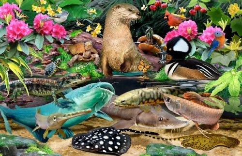 Howard Robinson - в мире веселых животных