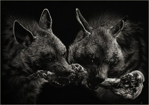 «Нацарапанное» творчество Cristina Penescu