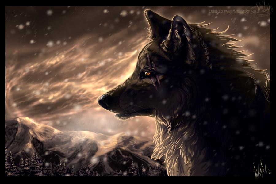 В мире волков wolfroad часть 1