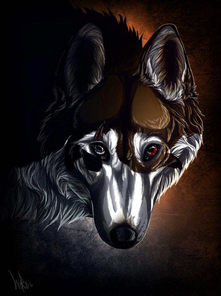 В мире волков wolfroad часть 2