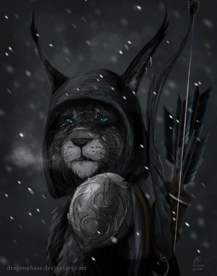 http://dreamworlds.ru/uploads/posts/2012-02/1328117904_skyrim-kimahri-by-dragonphase.jpg