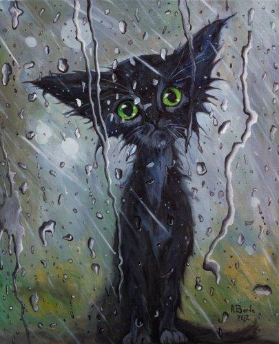 Фото Грустный чёрный кот смотрит на дождь за стеклом.