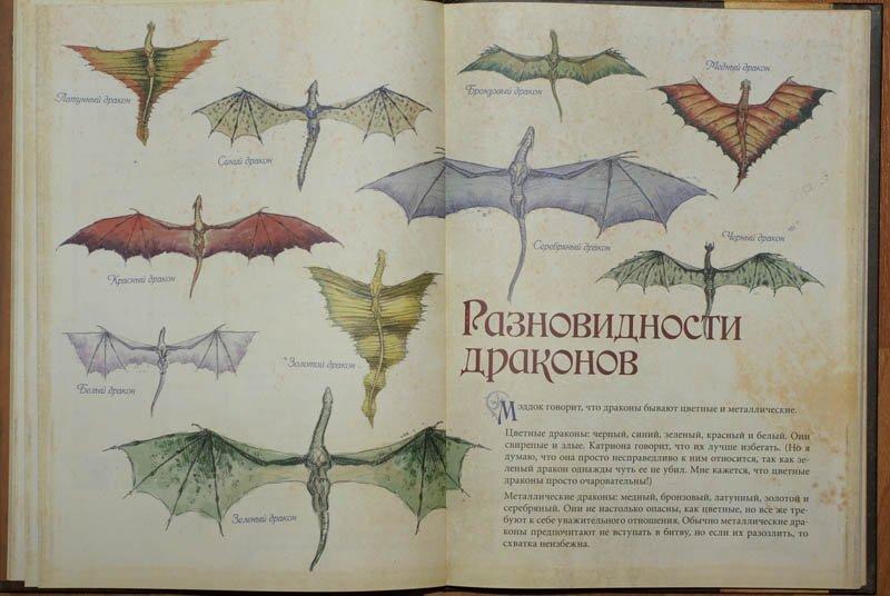 книга драконов читать с картинками