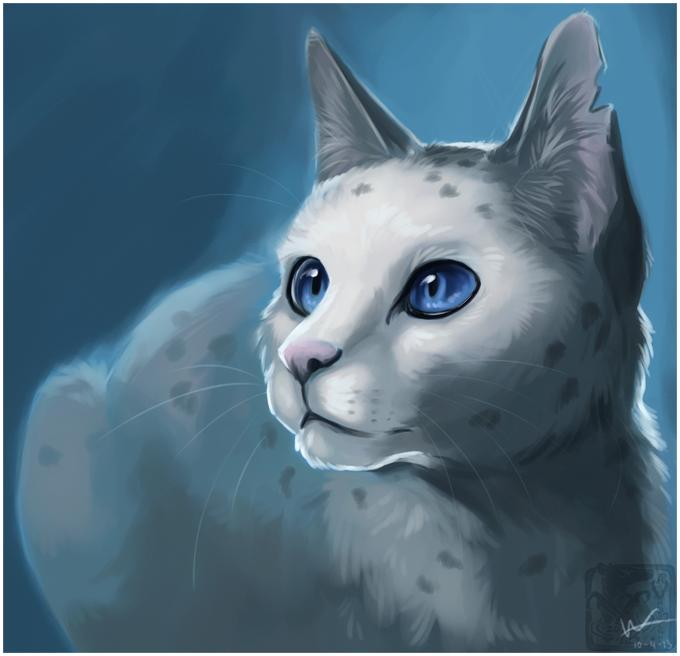 Арты фото котов воителей
