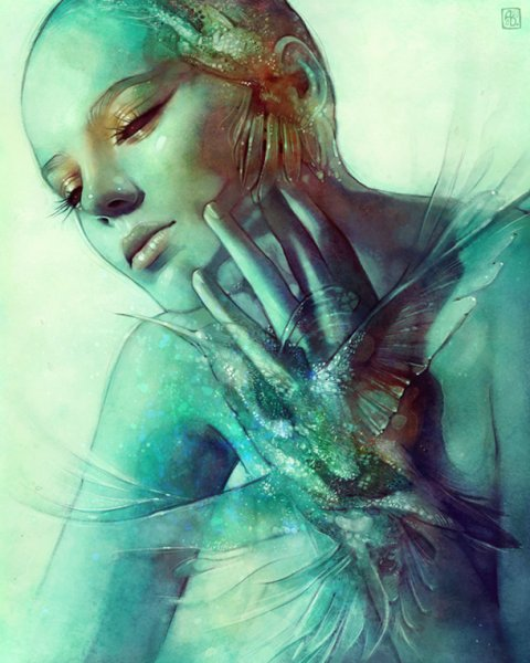 Illustration; Anna Dittmann